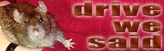 dws_banner_1570.jpg